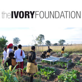 The Ivory Foundation